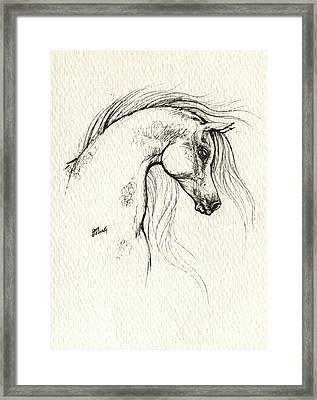 Arabian Horse Drawing Framed Print by Angel  Tarantella