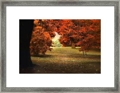 Autumn Ablaze Framed Print by Jessica Jenney