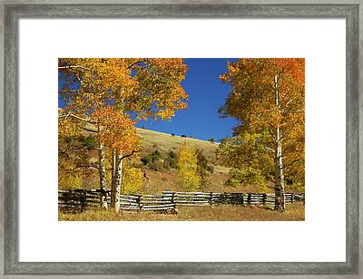 Autumn Cedar Mountain Utah Framed Print