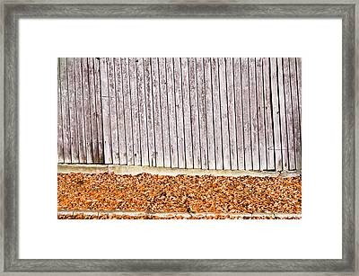 Autumn Leaves Framed Print by Tom Gowanlock