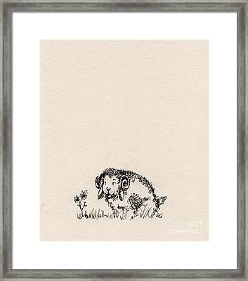 Baa Baa Framed Print by Angel  Tarantella