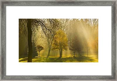 Beaming Morning Framed Print