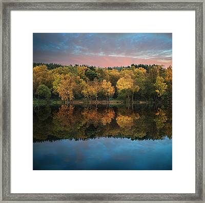 Beautiful Vibrant Autumn Woodland Reflecions In Calm Lake Waters Framed Print by Matthew Gibson