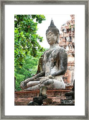 Framed Print featuring the photograph Buddha Statue by Yew Kwang