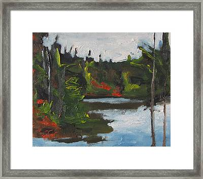 By The Pond Framed Print by Francois Fournier
