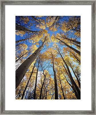 California, Sierra Nevada Mountains Framed Print
