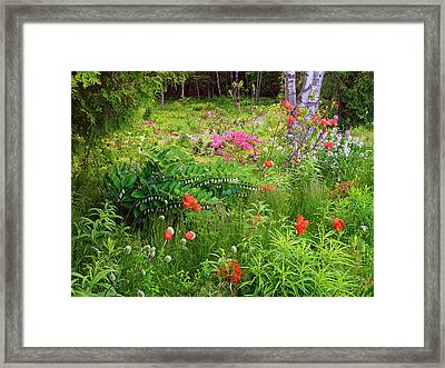 Canada, New Brunswick, Garden And Forest Framed Print