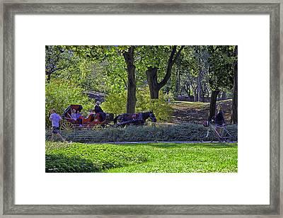Central Park Afternoon Framed Print by Madeline Ellis