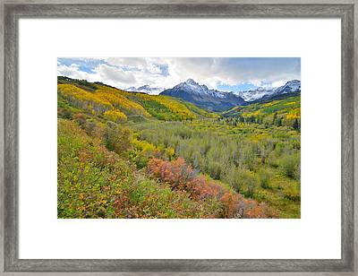 Dallas Creek Road Fall Colors Framed Print