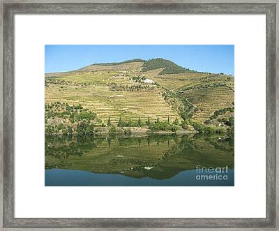 Framed Print featuring the photograph Douro River Valley by Arlene Carmel