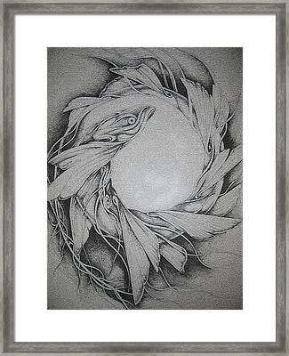 Fish Framed Print by Moshfegh Rakhsha