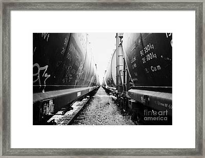 freight grain trucks on former canadian pacific railway now great sandhills railway through leader S Framed Print