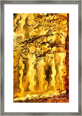 Golden Forest Framed Print by Odon Czintos