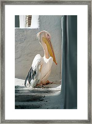 Greece, Mykonos, Chora Framed Print by David Noyes