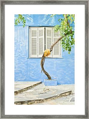 Greek House Framed Print by Tom Gowanlock