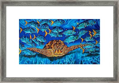 Sea Turtle And Jacks Framed Print by Daniel Jean-Baptiste