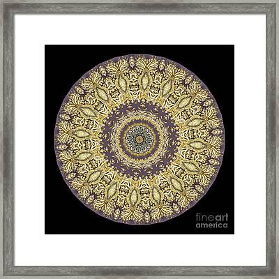 Kaleidoscope Ernst Haeckl Sea Life Series Framed Print