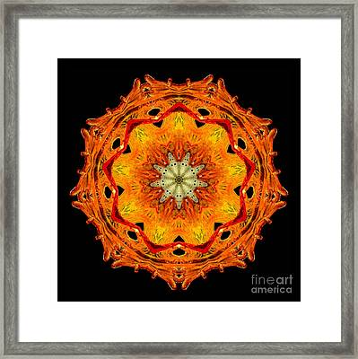 Kaleidoscope Of Blown Glass Framed Print by Amy Cicconi