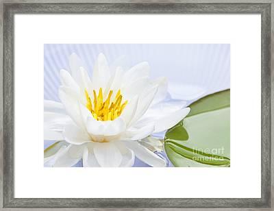 Lotus Flower Framed Print by Elena Elisseeva