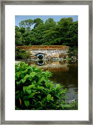 Morikami Japanese Garden And Museum Framed Print by Amy Cicconi
