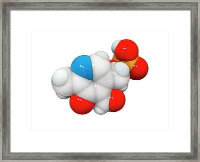 Pyridoxal Phosphate Molecule Framed Print