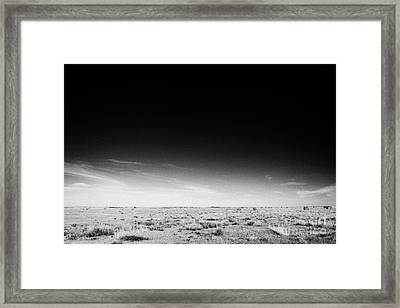 rural prairie grassland open fields bengough Saskatchewan Canada Framed Print by Joe Fox