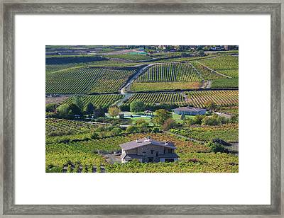 Spain, Basque Country Region, La Rioja Framed Print