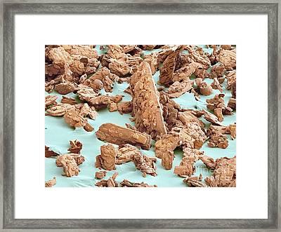 Sweetn Low Sweetener, Sem Framed Print by Thomas Deerinck, NCMIR
