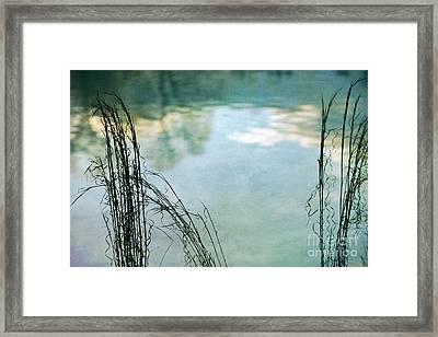 Untitled Framed Print by Doug Sturgess