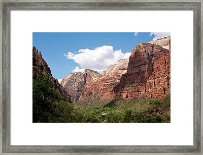 Usa Utah, Zion National Park Framed Print by Lee Foster