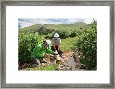 Volunteers Maintaining Hiking Trail Framed Print