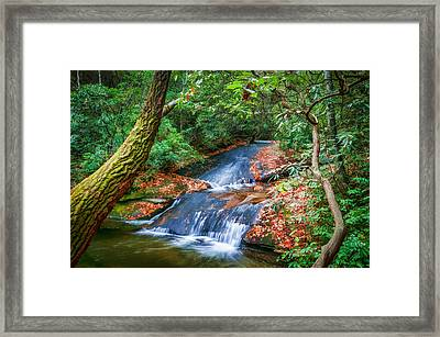 Waterfalls Great Smoky Mountains Painted  Framed Print