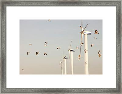 Wind Turbine In Workington Framed Print by Ashley Cooper