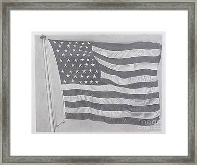 50 Stars 13 Stripes Framed Print