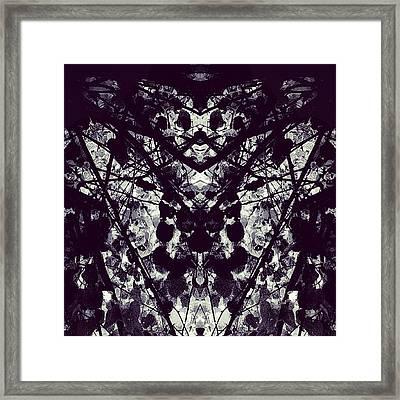 Tree Branches B 'n' W Framed Print