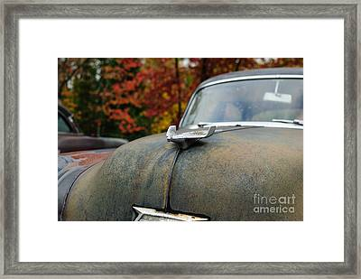 Framed Print featuring the photograph 54  by Paul Noble