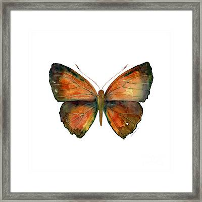 56 Copper Jewel Butterfly Framed Print