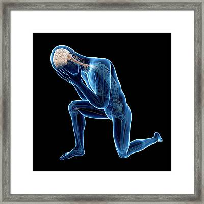 Human Nervous System Framed Print by Sebastian Kaulitzki