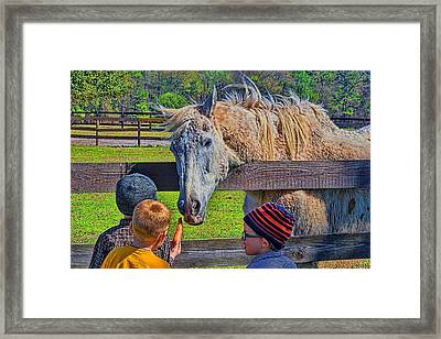 Framed Print featuring the photograph 5931_212 by Lewis Mann