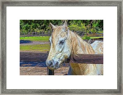 Framed Print featuring the photograph 5936_212 by Lewis Mann