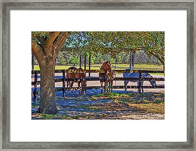 Framed Print featuring the photograph 5938_212 by Lewis Mann