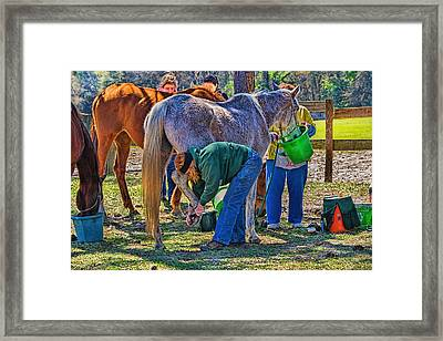 Framed Print featuring the photograph 5991_212 by Lewis Mann