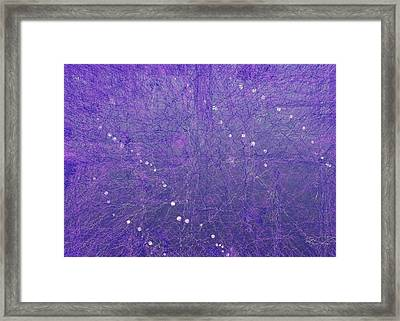 5x7.l.1.12 Framed Print