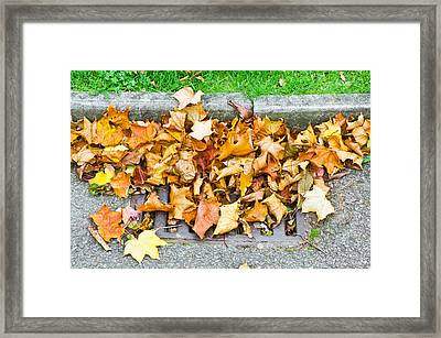 Autumn Leaves Framed Print by Tom Gowanlock