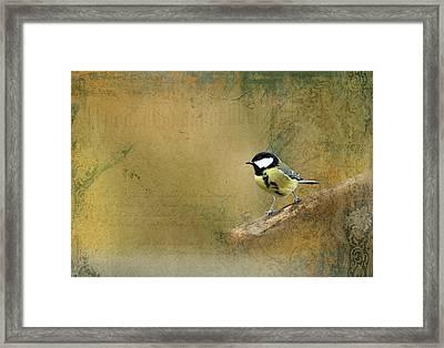 Bird Framed Print by Heike Hultsch