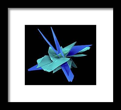 Biomimetics Framed Prints
