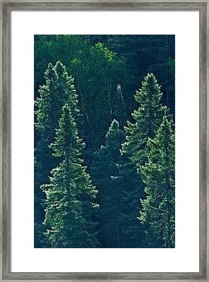 Canada, Ontario Algonquin Provincial Framed Print