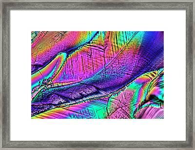Citric Acid Crystals Framed Print