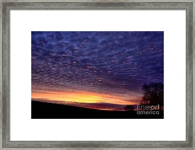 Dawn Of The Day Framed Print