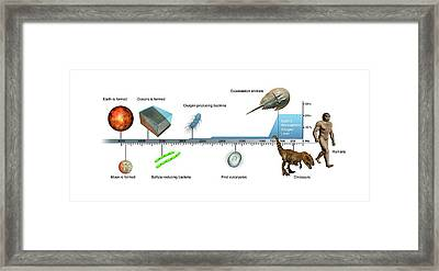 Evolution Of Earth Timeline Framed Print by Mikkel Juul Jensen